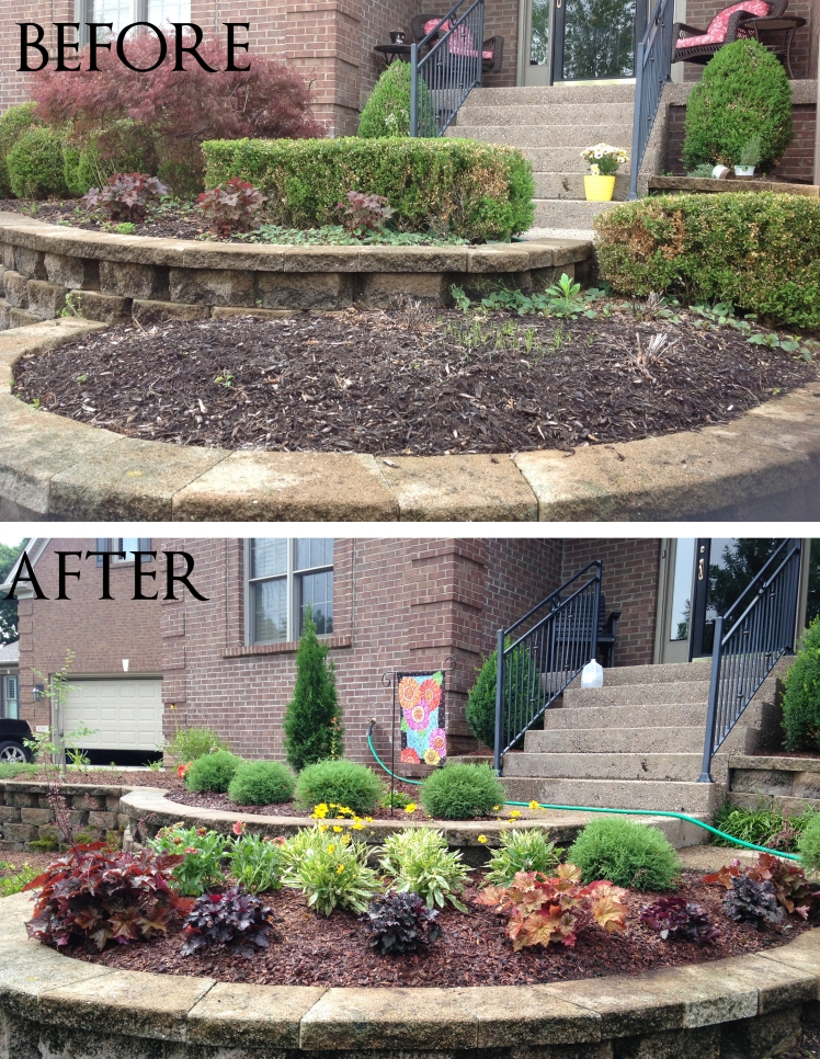 Front Color Bed