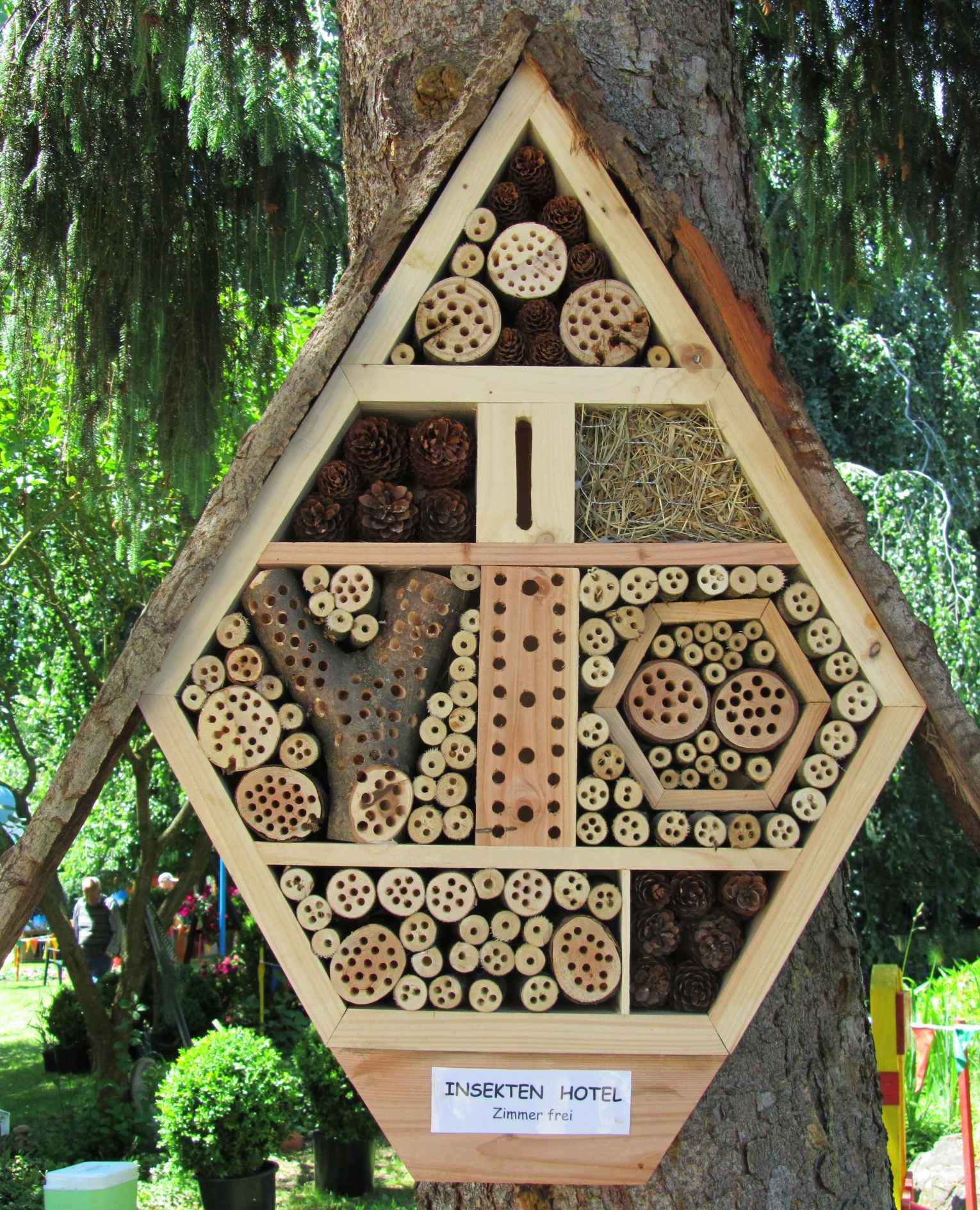 The Most Popular Designs Australians Want In Their Homes: Creating A Native Bee Home