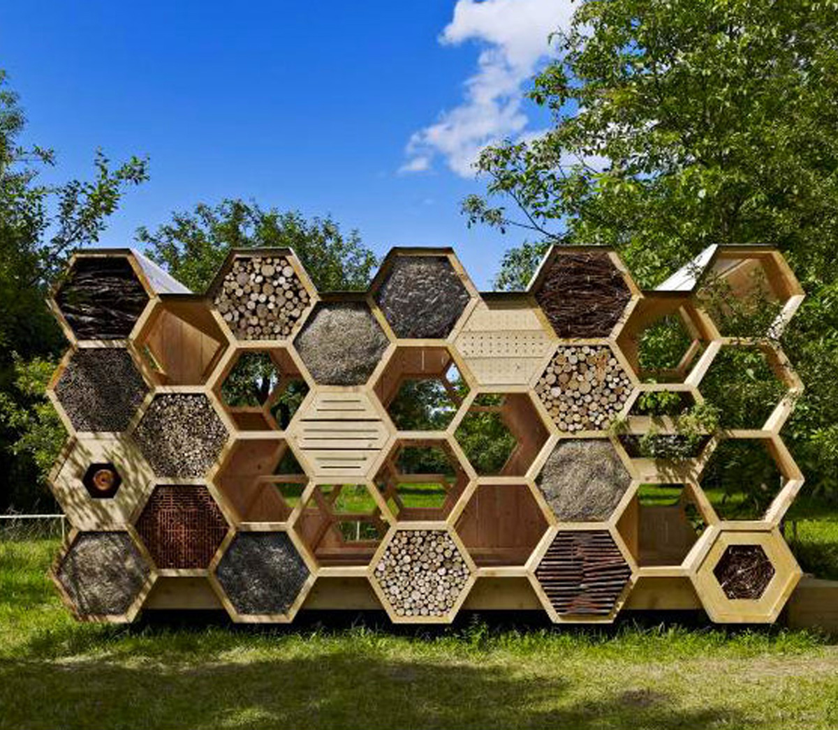 Creating A Native Bee Home
