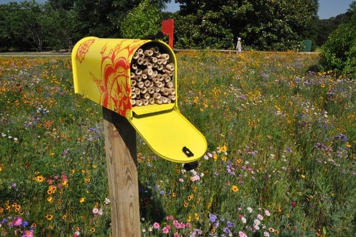 native-bee-habitat-2