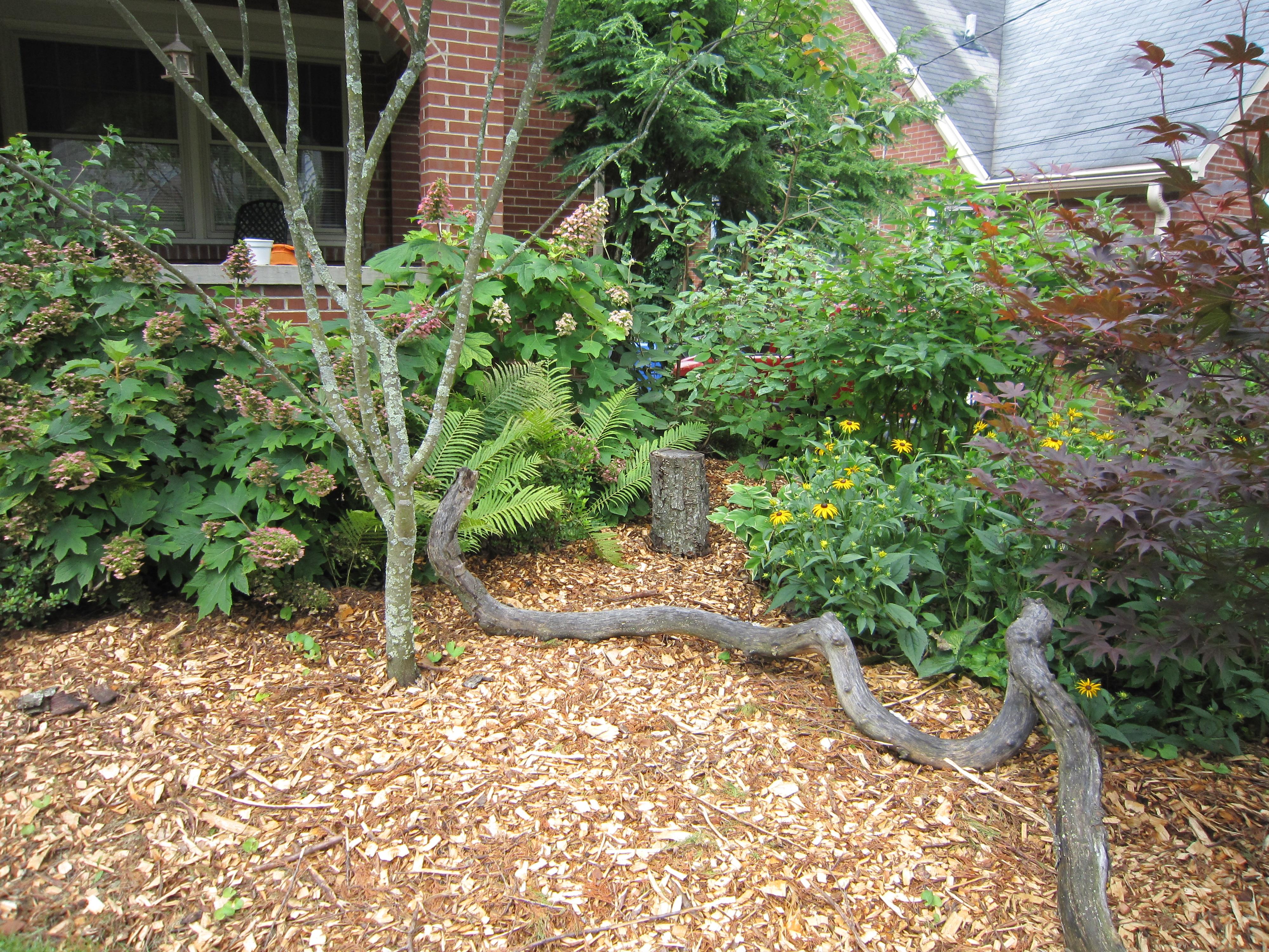 Unique Lawn Care Lexington Ky