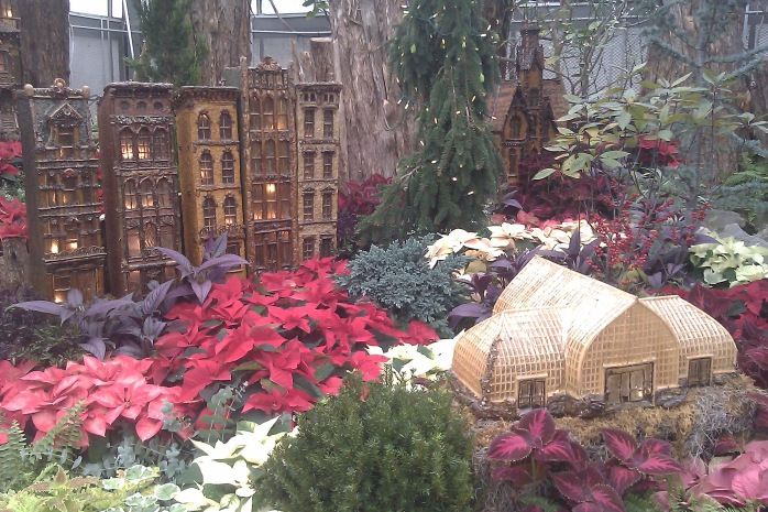 Visit to Krohn Conservatory last December