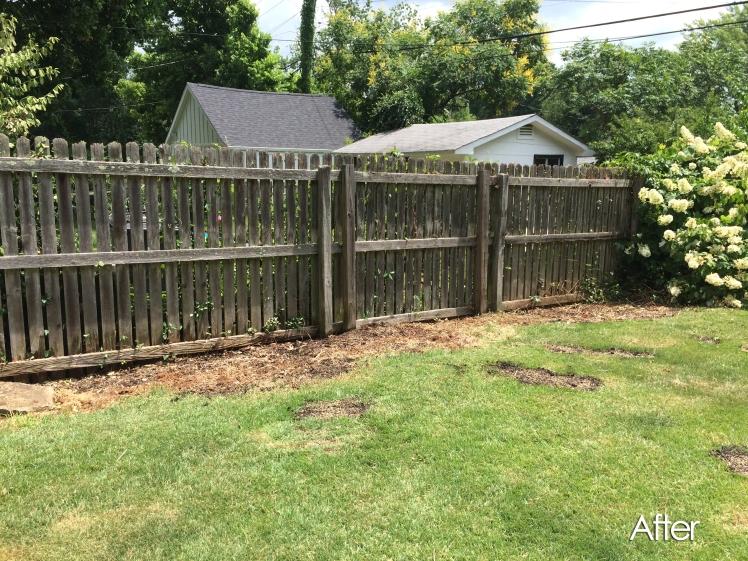 After Back Side Fence