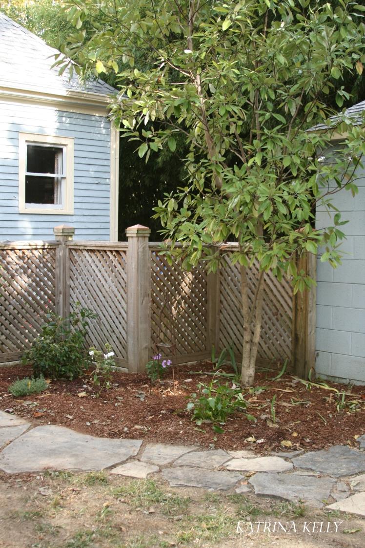 magnolia-corner