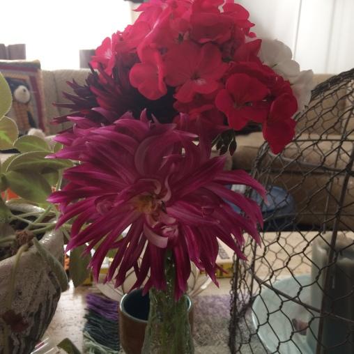 Dahlia and Geraniums